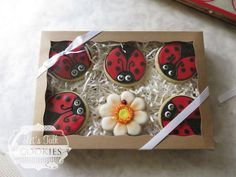 Ladybuds and flower gift box   Cookie Connection