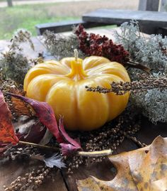 Pumpkin Beeswax Candle - Pure Michigan Beeswax - Farmhouse Decor - Fall - Thanksgiving Decor - Rustic - Table Centerpiece - Handmade Home Decor Rustic Farmhouse Decor, Rustic Decor, Rustic Table Centerpieces, Candle Decorations, Fall Dishes, Large Candles, Beeswax Candles, Christmas Candles, Exotic Flowers