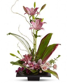 OH MY This is Gorgeous for MOTHER'S DAY Imagination Blooms with Cymbidium Orchids Flowers, Imagination Blooms with Cymbidium Orchids Flower Bouquet - Teleflora.com