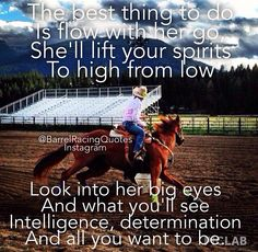 Barrel quote - Horses Funny - Funny Horse Meme - - Barrel quote Horses Funny Funny Horse Meme Barrel quote The post Barrel quote appeared first on Gag Dad. The post Barrel quote appeared first on Gag Dad. Horse Meme, Funny Horses, Cute Horses, Beautiful Horses, Barrel Racing Quotes, Barrel Racing Horses, Barrel Horse, Cowgirl Quote, Cowgirl And Horse