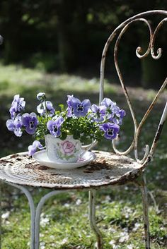 Ana Rosa chair with flowers in a teacup on top . Dream Garden, Garden Art, Garden Cottage, Deco Floral, Old Chairs, My Secret Garden, Garden Chairs, Pansies, Belle Photo