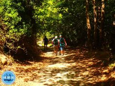 Wandelen op Kreta wandelvakanties oost Kreta Zuid Kreta noord Kreta West Kreta Country Roads, Crete