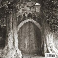 Ancient Trees: Portraits of Time by Beth Moon.  Captivating black-and-white photographs of the world's most majestic ancient trees. Beth Moon's fourteen-year quest to photograph ancient trees has taken her across the United States, Europe, Asia, the Middle East, and Africa.