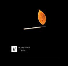 Se responsable allá afuera | WWF