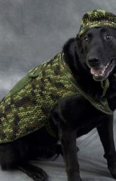 Free pattern for crocheted hunter dog costume