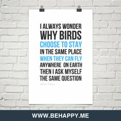 I always wonder why birds  choose  to stay in the same place  when they can fly anywhere  on eart... by Harun Yahya #90781