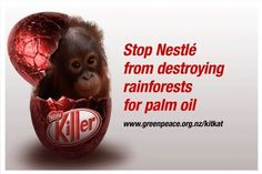 Species Gravely Endangered by Global Trade of Commodities like Palm Oil.    Please educate yourselves on this crisis. Several species are at stake all for cheap OIL used in food. Take time to learn which companies are using this non-sustainable source !!!