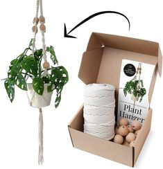 Macrame Kits for Adults Beginners, Best for Macrame Plant Hanger, Macrame Wall Hanging Kit, Macrame DIY Kit. Diy Macrame Wall Hanging, Macrame Plant Hanger Patterns, Macrame Plant Hangers, Macrame Patterns, Macrame Purse, Weaving Patterns, Quilt Patterns, Macrame Supplies, Macrame Projects