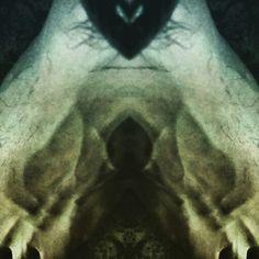 #Psycedelic #art #floor #mirroreffect #techno #techhouse #minimalmusic #dub #technoculture #dj #wired