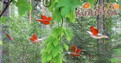 Tiffany glass butterflies are flying in my pavillion year around