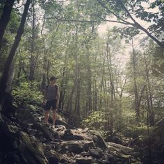 Hiking Mount Tammany in the Delaware Water Gap | Escaper