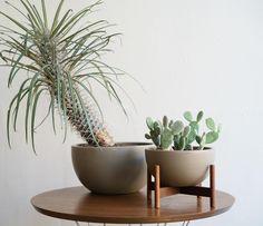 Mini case study planter
