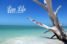 One of the most beautiful beaches in Southern Florida is located within Loves Key Sates Park . The 2.5 miles of sugar w...