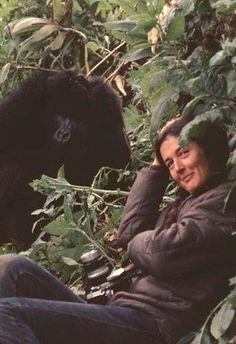 Dian Fossey, US zoologist who studied gorilla groups in Africa. Killed by poachers. RIP.