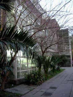 Patio Escuela de Bellas Artes Lola Mora