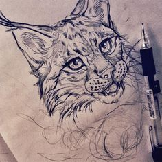 #bobcat #drawing #sketches #pencil #sketch #sketchbook #animaldrawing #pencildrawing #illustration #art #essitattoo #tattoodesign #tattooidea #tattooart #tattoosketch #natureart #wildlifeart #tatuoinnit #piirustus #luonnos #kuvitus #illustrator #tattooartist #instaart #instaartist
