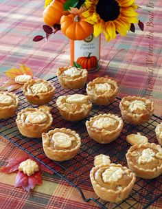 Mini Pumpkin Pies baked in a muffin tin