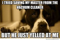 I tried saving my master from the vacuum cleaner, but he just yelled at me.    So true!