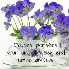 View top-quality stock photos of Purple Violas In Patterned Cup And Saucers. Find premium, high-resolution stock photography at Getty Images. Bon Weekend, Ikebana Arrangements, Floral Arrangements, Flower Arrangement, Pansies, Daffodils, Bon Week End Image, Week End Entre Amis, Purple Flowers