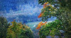 Octobre 2014, Sudety, montagnes au Sud de la Pologne. Un érable sycomore séculaire au feuillage enflammé