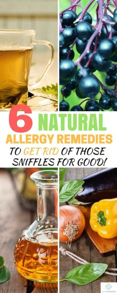 6 Effective Natural Allergy Remedies to Banish Those Sniffles for Good Natural Remedies For Allergies, Natural Cold Remedies, Cold Home Remedies, Cough Remedies, Herbal Remedies, Health Remedies, Sleep Remedies, Holistic Remedies, Allergy Home Remedies