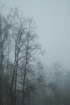 December Mists. Natalia Drepina