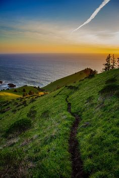 10 Incredible Hikes in Oregon:  Cascade Head (Northern Oregon Coast)  Photo by  Jeremiah Leslie  via Flickr.