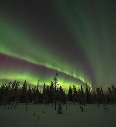 Aurora Borealis in Poison, Kunta. Finland. By @jari_peltomaki
