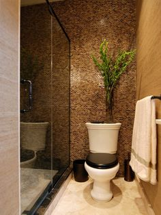 Bathroom Small Toilet Rooms Design, Pictures, Remodel, Decor and Ideas - page 3