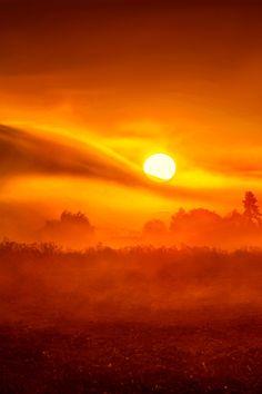 Sunrise or Sunset? Nature Pictures, Beautiful Pictures, Moon Pictures, Yellow Photography, Beautiful Sunrise, Fantasy Landscape, Heaven On Earth, Stars And Moon, Amazing Nature