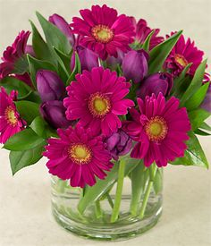 Florero 10 Tulipanes Morados y Gerberas en el tono.  FL032