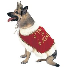 King Dog Pet Costume,Medium >>> Additional details at the pin image, click it  : Costumes for dog