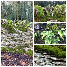 mossy stone wall