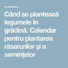 Când se plantează legumele în grădină. Calendar pentru plantarea răsarurilor și a semințelor Calendar, Gardening, Desserts, Plant, Tailgate Desserts, Deserts, Lawn And Garden, Postres, Life Planner
