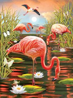 Flamingos-Vertical by Rosiland Solomon