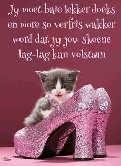 Afrikaanse Quotes, Night Wishes, Good Night Quotes, Strong Quotes, Cute Quotes, Wisdom Quotes, Good Morning, Funny, Animals