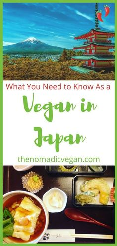 Wonderiing if you can be vegan in Japan? You definitely can, but it's very helpful to know a few handy tricks for finding vegan food in Japan. Here are some lessons learned and mistakes to avoid, from a first-time vegan traveler to Japan. Vegan Breakfast Recipes, Vegan Snacks, Vegan Recipes, Vegan Food, Vegan Raw, Vegan Dinners, Vegan Lunches, Eating Vegan, Finding Vegan