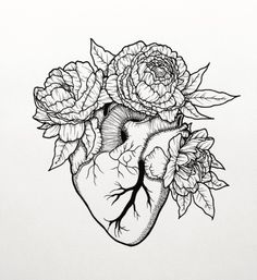 Tattoo Commission || Anatomical Heart & Peonies #tattoo #drawing