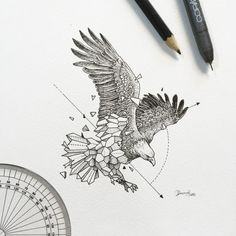 Geometric beasts eagle