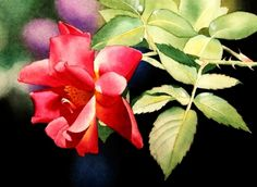 Red Roses & Leaves, painting by artist Jacqueline Gnott  This is my favorit painting on Daily Painters today.