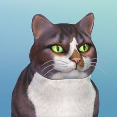 new year new me haha jk!! just playing the sims 4 - i can't be replicated but here's a good try R . . #cats #catsofinstagram #model #ceo #entrepreneur #meowtrepreneur #meow #feminist #cat #seniorcat #chicago #thesims #thesims4 #thesims4pets
