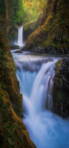 10 Greatest Waterfalls in the World – Trending Pins Jog Falls, Places To Travel, Travel Destinations, Oregon Landscape, American Falls, Famous Waterfalls, Beautiful Waterfalls, Largest Waterfall, Iguazu Falls