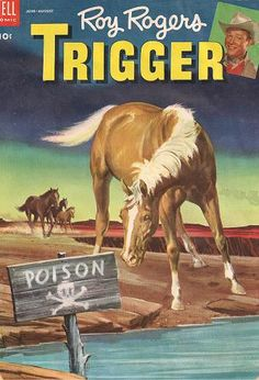 Image result for roy rogers trigger