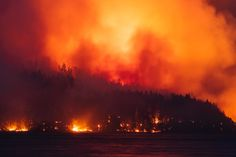 The Dog Mountain & Sproat Lake forest fire - Circa 1983 - The Photo Roll of Owen Perry