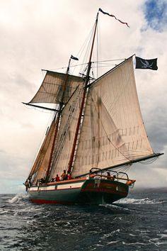 #barco #ship #sail