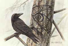Raven Shadow- Sue Coleman