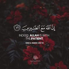 Quran Interactive - global resourse for learning Quran Kareem Recitation, Quran online with Tajweed. Learn how to read, understand, recite and memorize in online Quran classes and courses Beautiful Quran Quotes, Quran Quotes Inspirational, Islamic Love Quotes, Muslim Quotes, Religious Quotes, Arabic Quotes, Beautiful Verses, Hindi Quotes, Quran Wallpaper