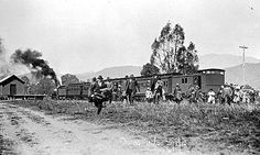 Bright train near Victoria Australia, Amazing Pics, Old Photos, Buffalo, Melbourne, Transportation, Coloring, Bright, Train
