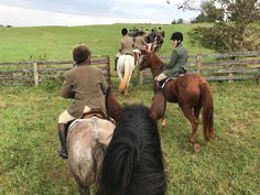 Hunting in Virginia with the Keswick Hunt Club. Tally Ho, Hunt Club, Virginia, Hunting, Horses, Vacation, Animals, Vacations, Animaux