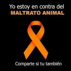 Contra os maltratos aos animais